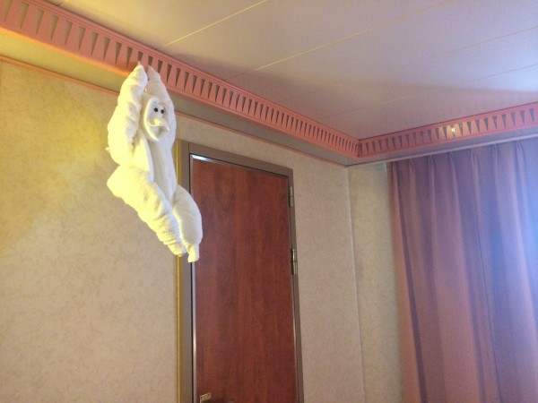 towel animal thursday