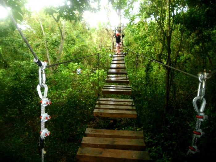 rope bridge 3