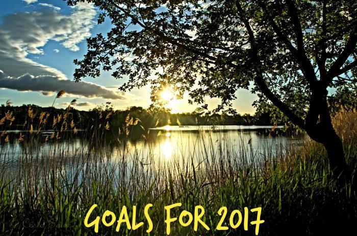 goals2017